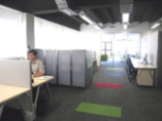 Open Plan Office Design / Interior Design Auckland